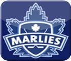 Toronto  Marlies